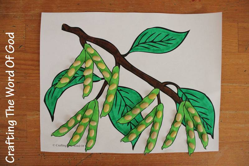 Image Result For Mustard Seed And Yeast Craft For Sunday