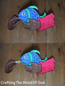 The Fish And The Coin